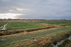 Teil des Schutzgebietes Fehntjer Tief