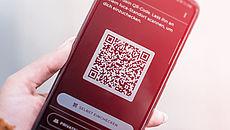 Smartphone in der Hand mit geöffneter Luca-App